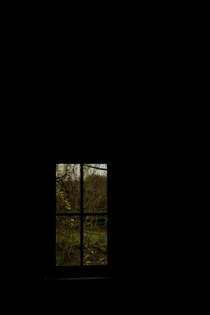 2011-12-04-14-40-34